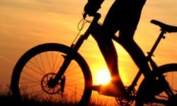 Mountainbike-700x210