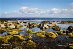 Isole Aran - Inisheer