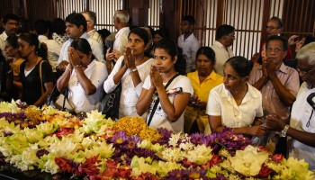Lankamale 2016-339 tempio del dente