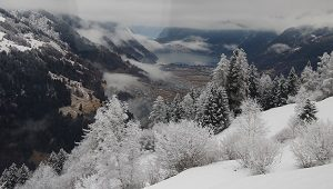 Tenino del Bernina 2017-065