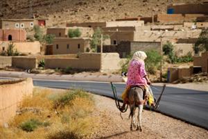 Traffico marocchino