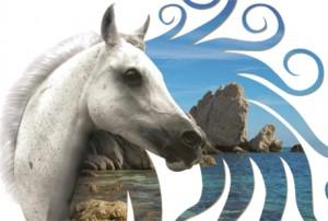 Marche Endurance Lifestyle 2013