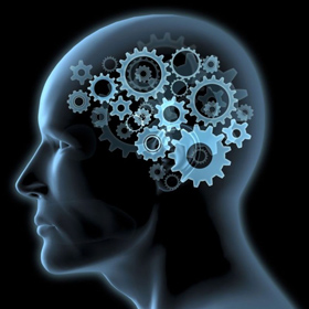 Il cervello di Nicorouge in funzione