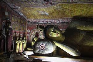 Un campione dei buddha di Dambulla